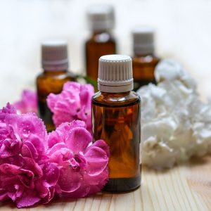 Plant Therapy Synergy Blends